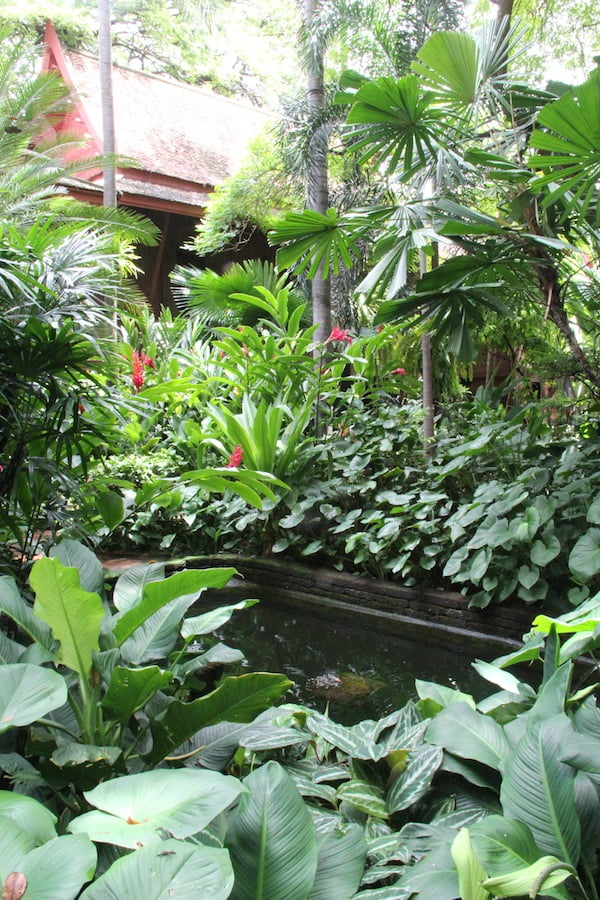 A pond in the rear garden is surrounded by lush foliage