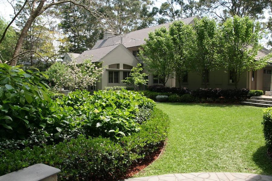 Lisa White's garden back garden2