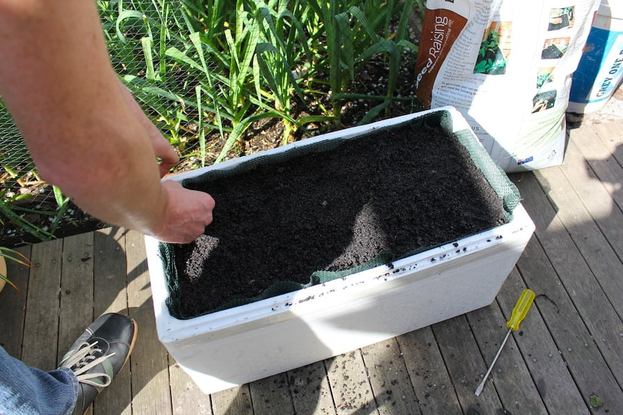 Self-watering pot ready for sowing seeds