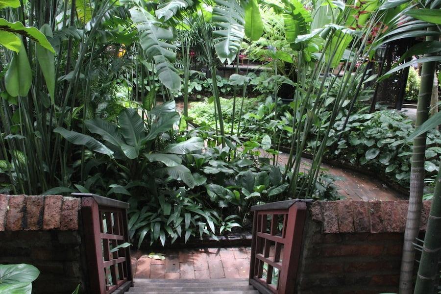 Views down into the garden