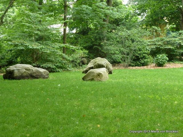The 'sentient' rocks of Carlisle Center Park