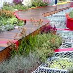 Burnley Living Roofs