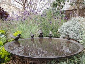 Willie Wildlife Willy-Wagtail and Wren Birdbath-Bowl