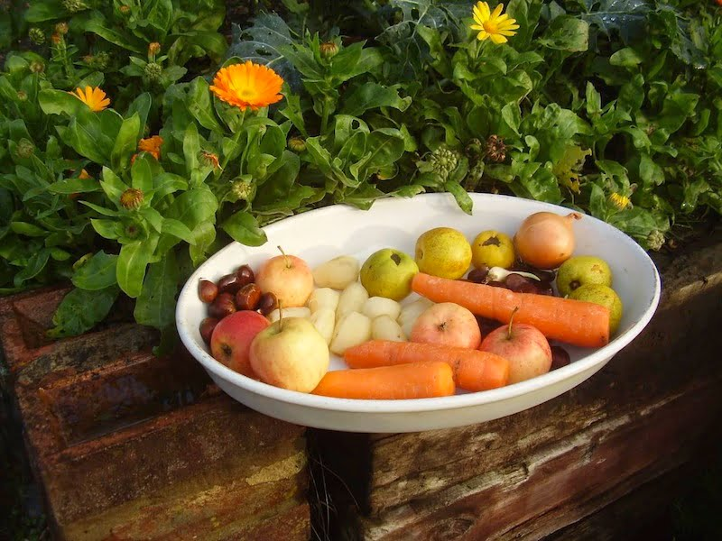 Roasting vegetables with the prepared dahlia tubers