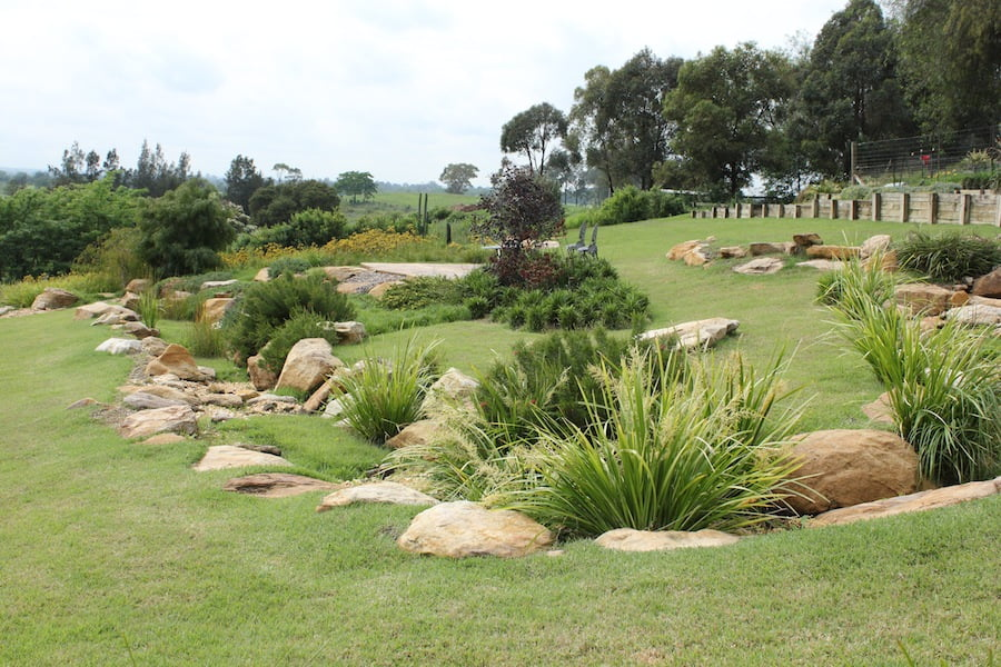 Combining large areas of turf with adequate areas of plants makes a natural-looking and cost effective landscape.