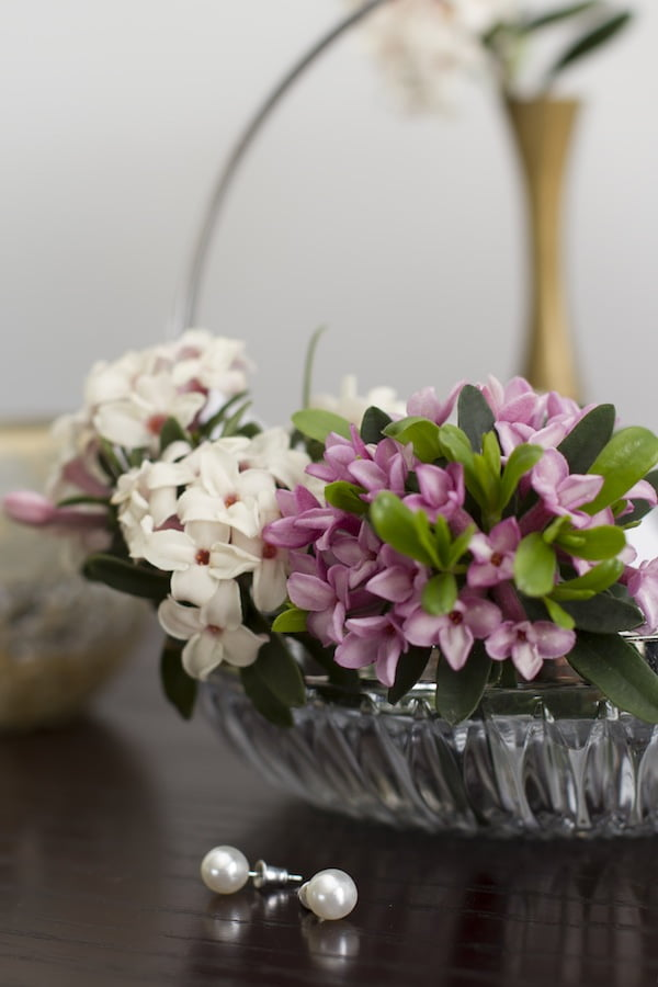 Beautiful and fragrant daphne is perfect in a vase