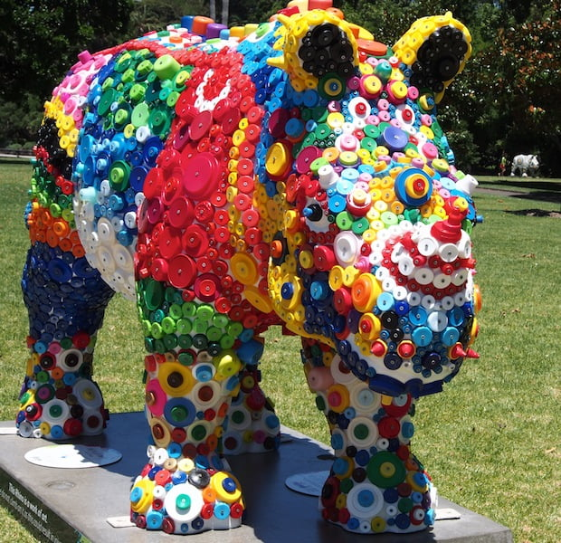 Put a Lid On It rhino by Jane Gillings