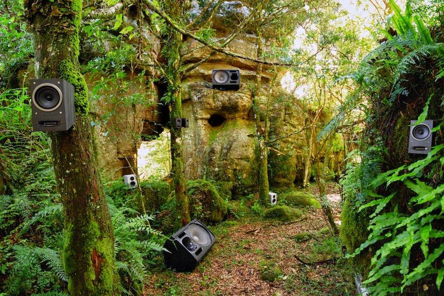 rainforest speakers
