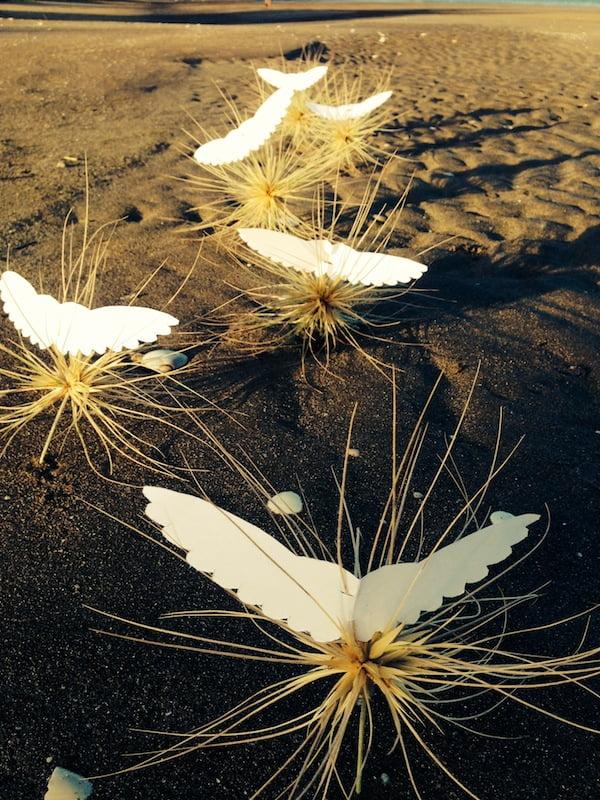 Seed angels