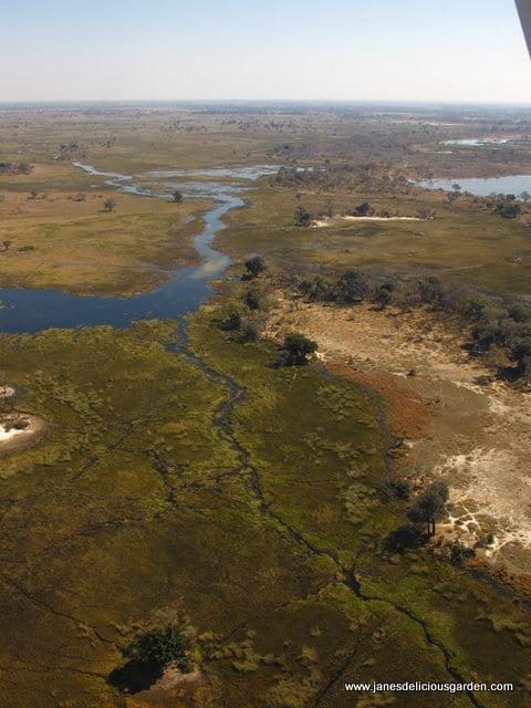 Botswana delta