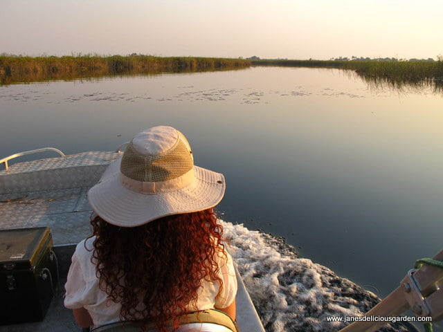 Botswana delta general (9)