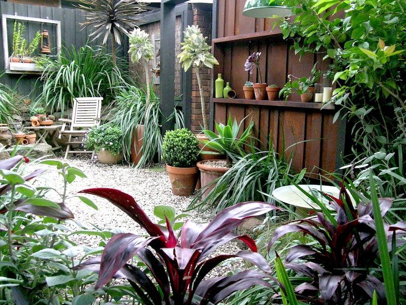Steven Wells garden