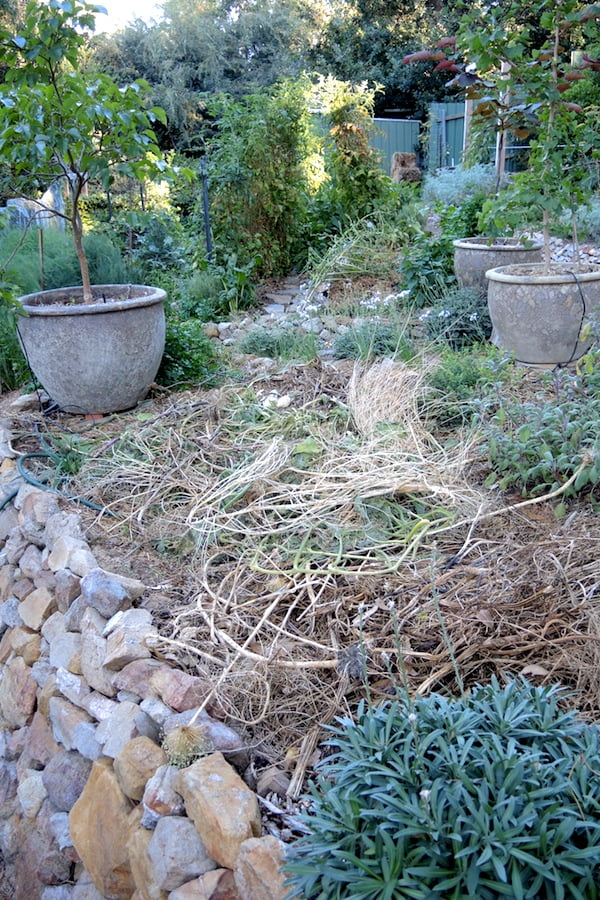 Unsightly but useful piles scattered about the garden