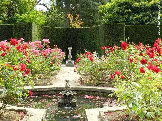 Batemans Photo courtesy Charlotte Weychan, The Galloping Gardener