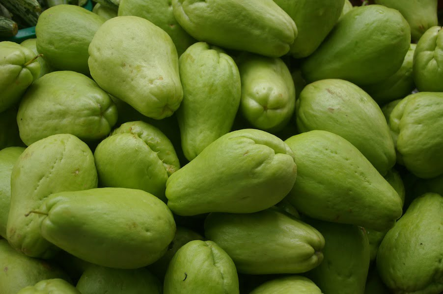 Green chokos are most widely grown