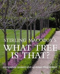 stirling-macoboy-what-tree-is-that