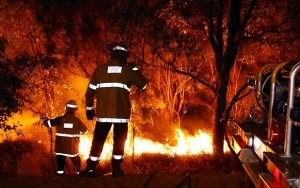 bushfire fighters