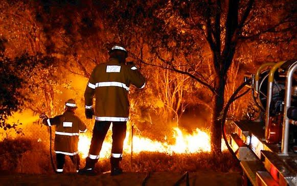 bushfire fighters
