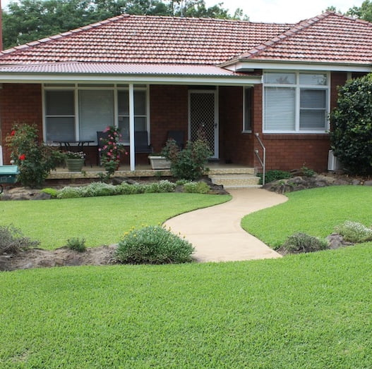 Lawn And Turf Care With Minimal Water