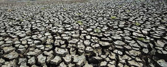 Drought cracked soil