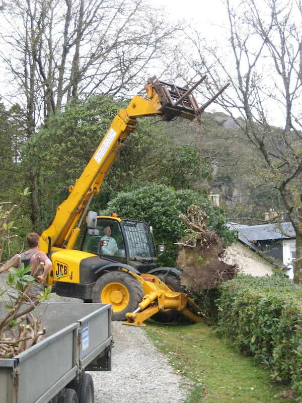 Lifting the stump over the hedge