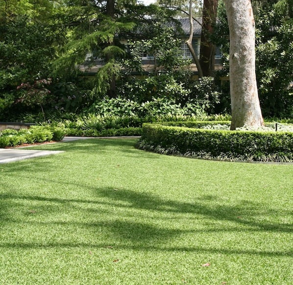 Lisa-Whites-garden-front-lawn