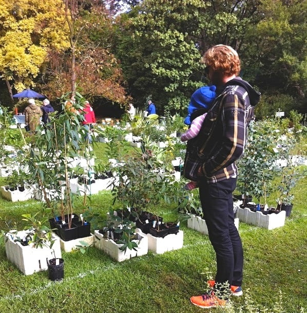 Melbourne rbg plant sale gardendrum for Gardening tools melbourne