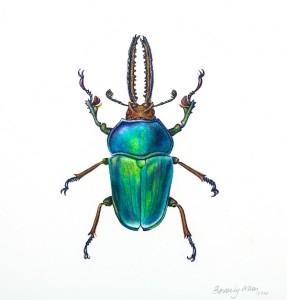 Botanica 2014, Beverly Allen, Stag beetle
