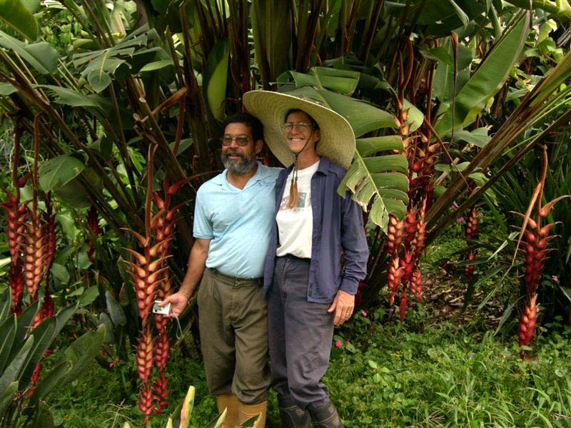 Endemic Heliconia magnifica in the garden with Angel and me