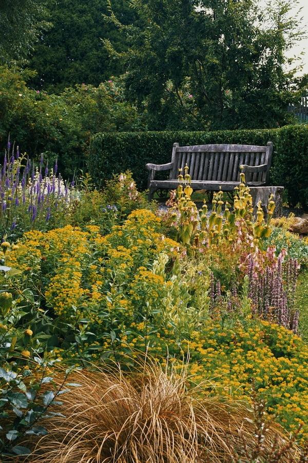 Take shots from inside garden beds