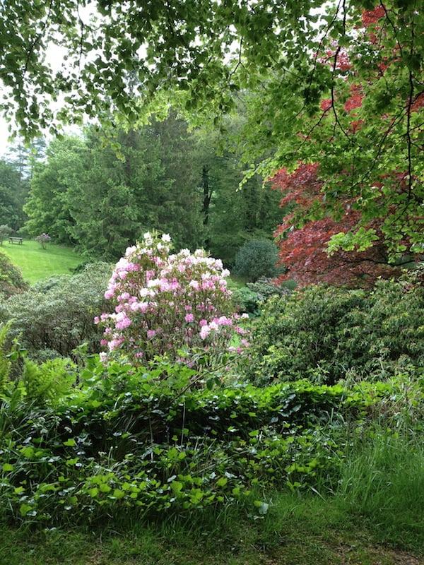 Wordsworth's Rydal Mount Photo Susannah Fullerton4