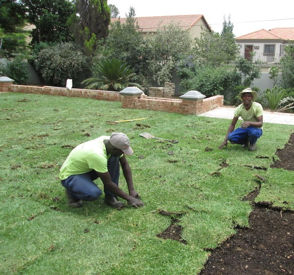 Installing the lawn