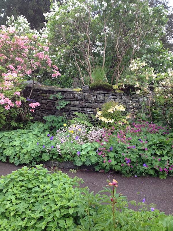 Beatrix Potter's garden3