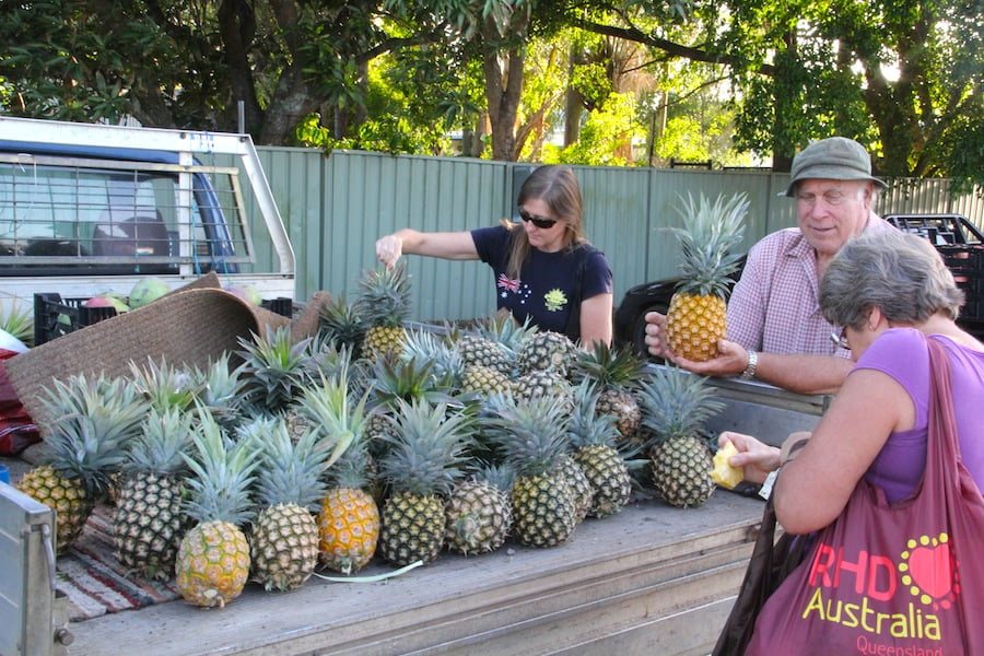 The best pineapples come straight off the growers truck