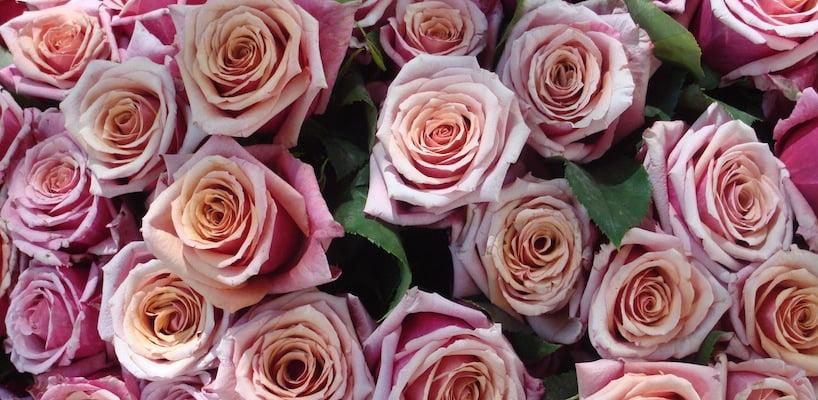 Bouquet_de_roses_roses