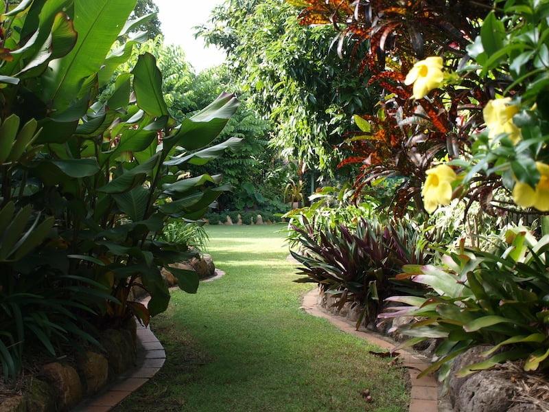 Ian and Judy Wintle's Open Garden 2014