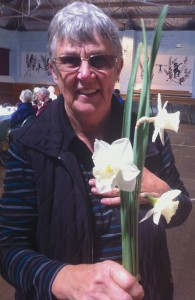 Laraine shows three daffodils whose configuration is not as perfect as that of the award-winner
