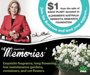 Memories-garden-drum-ad (1)