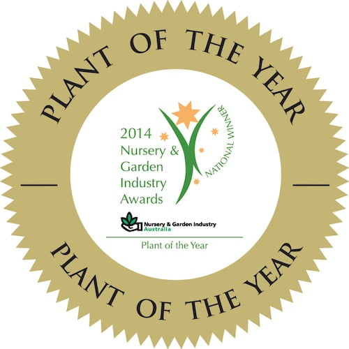 Plant of year medallion