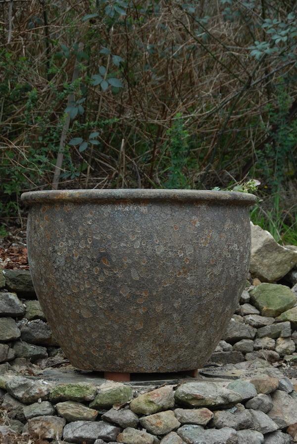 Use pot feet for good drainage