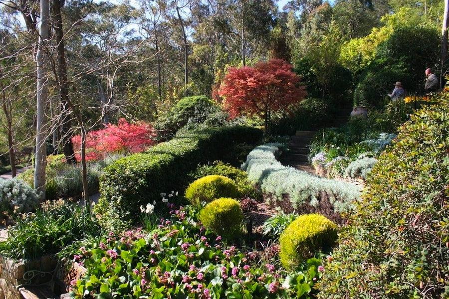 Carmel and John Niland's garden Mt Victoria, NSW