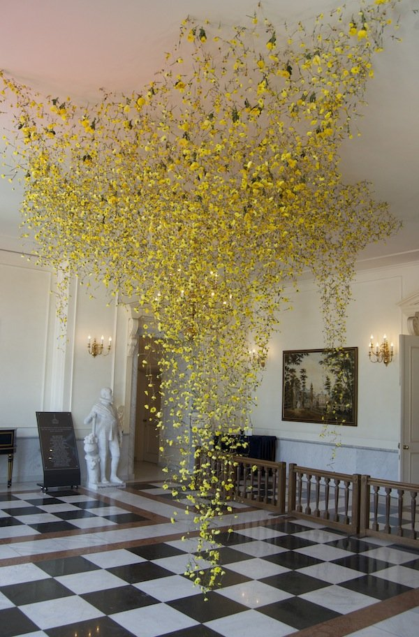 Installation by Rebecca Louise Law. A curtain of falling chrysanthemums attached by wire.