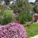 Seymour Park in Dunsborough, Western Australia6 copy