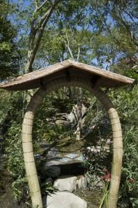 This years Gold winning garden by Kazuho Inohana