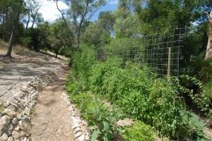 09A better crop in 2012