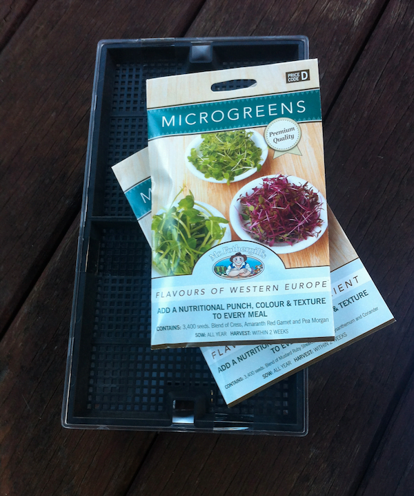 Day 1 Microgreens tray and seeds