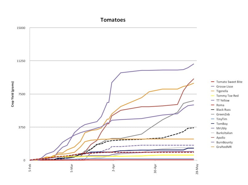 2013 Tomato Harvest -- cumulative harvest per variety