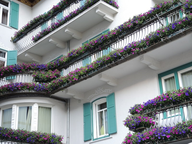 Window Boxes of the Dolomites Photo Helen McKerral05