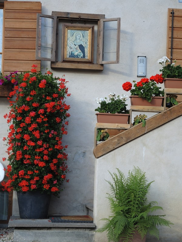 Window Boxes of the Dolomites Photo Helen McKerral25