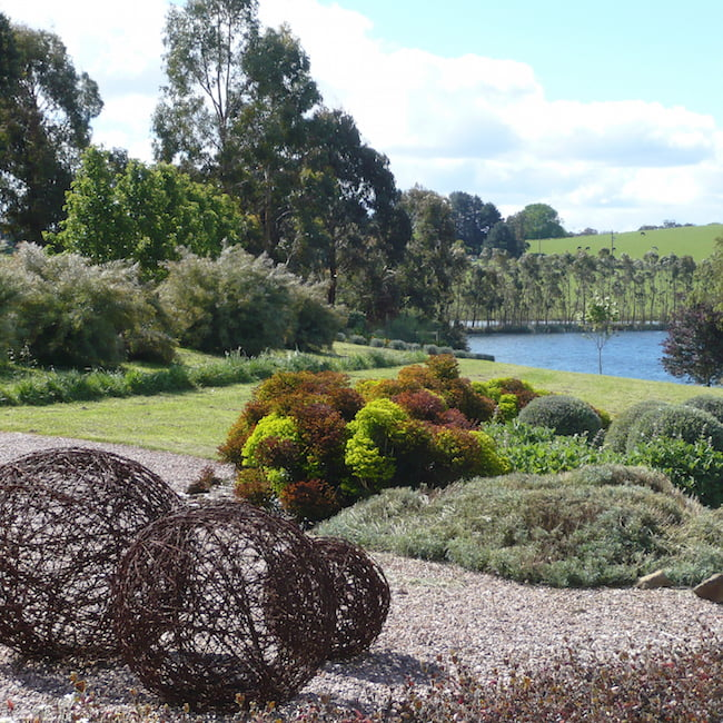 Back lake opening our young rural garden gardendrum for Rural garden designs